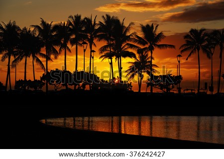 sunset over palm trees and Lagoon beach from Waikiki Beach, Honolulu, Oahu, Hawaii