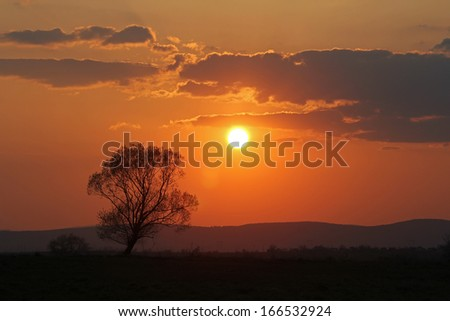 Sunset over the fields - stock photo