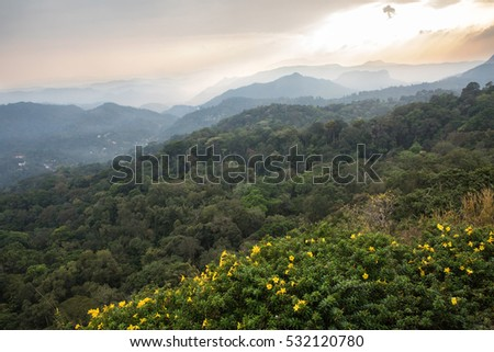 Sunset Over the Hills of Munnar in Kerala, India