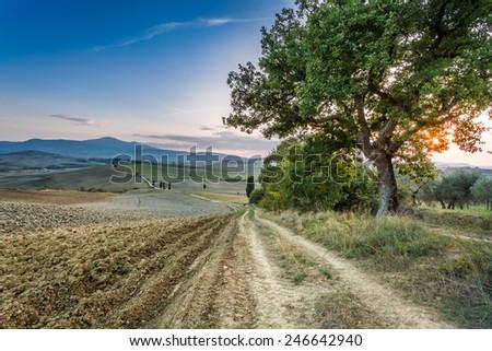 Sunset over the land of Tuscany - stock photo
