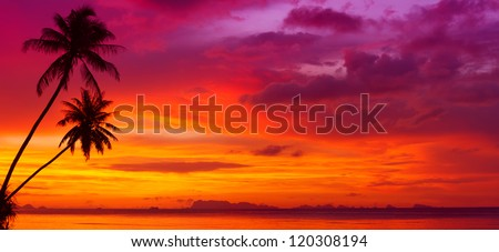 Sunset over the ocean with tropical palm trees silhouette panorama - stock photo