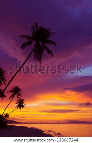 Sunset over the ocean with tropical palm trees silhouette, vertical panorama - stock photo