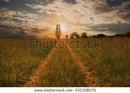 Sunset over the pasture - stock photo