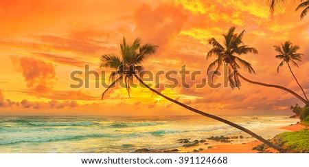 Sunset over the sea. Sri Lanka. Panorama - stock photo