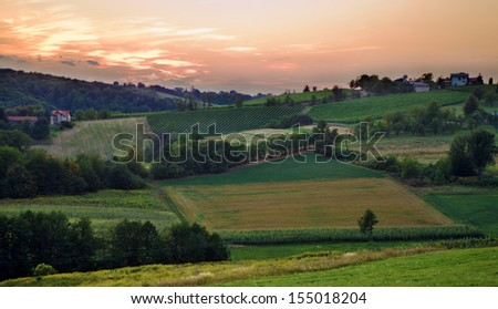 Sunset over vineyards on the hills - stock photo