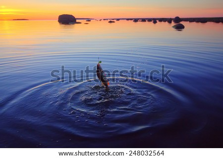 Sunset river perch fishing with  a rod - stock photo
