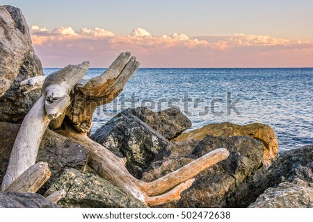 Sunset rocks and wood