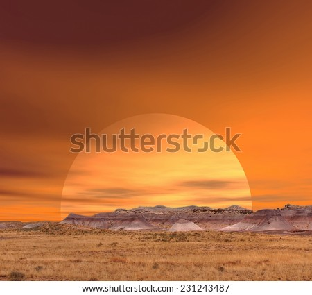 Sunset scenic landscape of ancient petrified forest