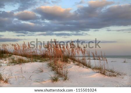 Sunset, Sea Oats  and Sand Dunes on the Beach - stock photo