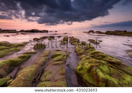 Sunset seascape with green moss foreground at Kudat Sabah malaysia. Image Contain soft focus and blur.