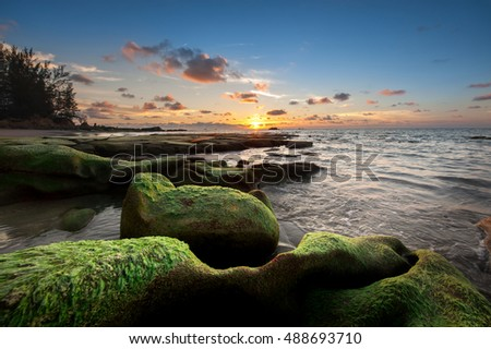 sunset  seascape with rocks covered by green moss at Kudat Sabah Malaysia. image contain soft focus and blur due to long expose.