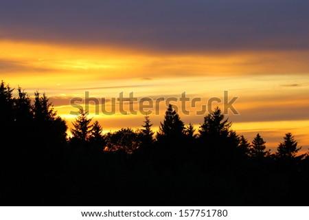 Sunset silhouette - stock photo