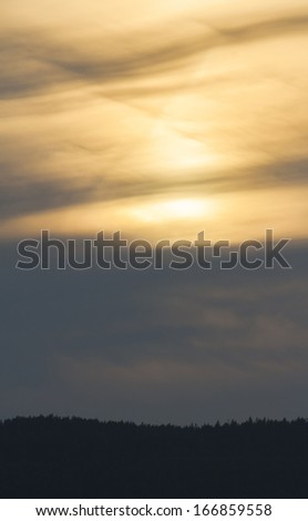 Sunset sky with woods