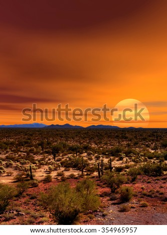 Sunset Sonora desert in central Arizona USA