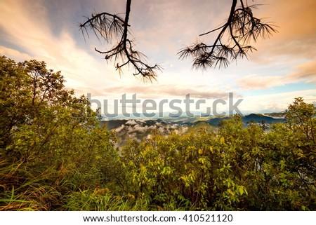 sunset,sunrise over forest - stock photo