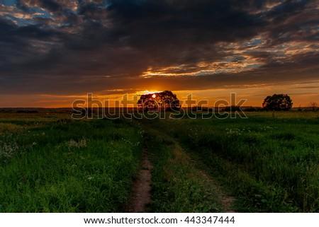 Sunset. The sun is setting. Cloud. Trees. The sun behind the trees. The sunset behind the trees. Clouds at sunset. The sunset behind the trees. The sun through the trees.The sun through the branches. - stock photo
