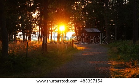 Sunset through the trees with a typical Swedish red-wood house near Lake Vanern (Sweden)