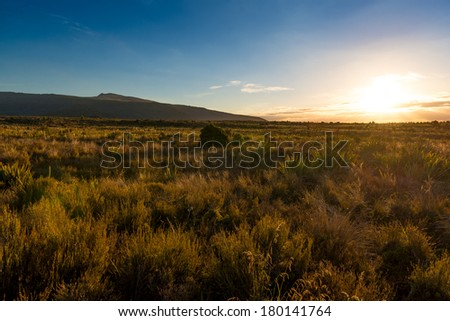 Sunset Tongariro National Park, New Zealand - stock photo