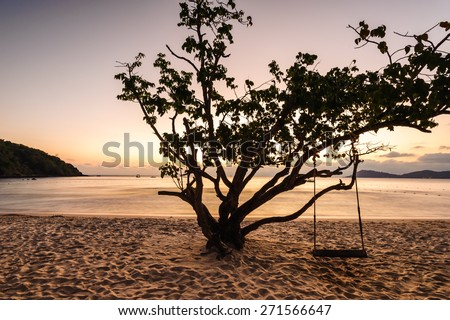 Sunset tree sea koh samet Rayong,Thailand