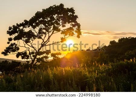 sunset view of russian isle Putyatin  - stock photo
