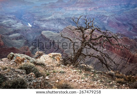 Sunset view of the Grand Canyon and the Colorado River from the Lipan point along the South Rim, Arizona landmark - stock photo