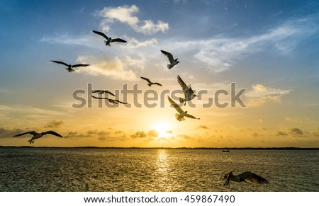 Sunset Views around the Caribbean Island of Bonaire in the ABC Islands