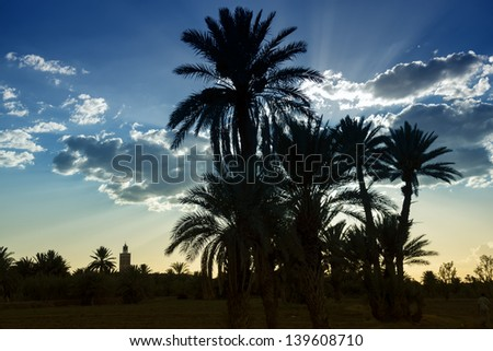 Sunset with mosque and date palms in Ouarzazate, Morocco. - stock photo