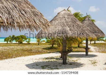 sunshades at a tropical beach with blue sky
