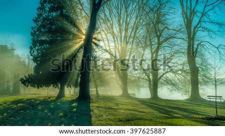 sunshine in foggy day,Stanley park Vancouver BC Canada