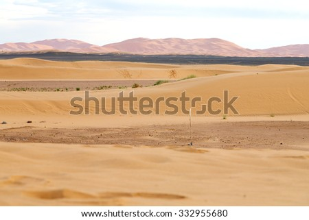sunshine in the desert of morocco sand and dune - stock photo