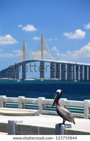 Sunshine Skyway Bridge - stock photo