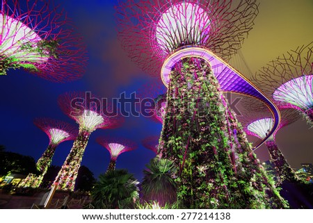 supertree garden at night garden by the bay
