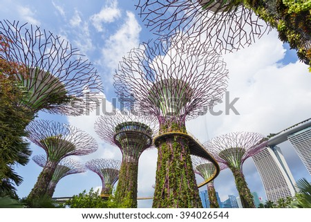 Supertree Grove and OCBC Skyway with Blue Sky, Gardens by the Bay, Singapore - 13 Mar 2016: These iconic tree-like vertical gardens are designed with large canopies that provide shade in the day. - stock photo