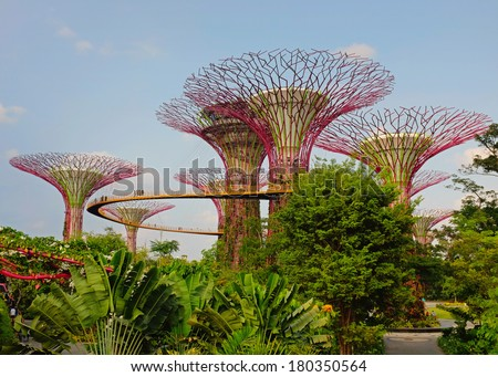 supertree grove in garden by the bay - singapore - stock photo