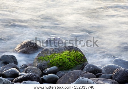Surf and seaweed on a stone