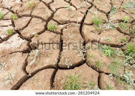surface crack of soil in arid area - stock photo