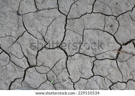 Surface of a grungy dry cracking parched earth for textural background./ Surface of a cracking dried up muddy riverbed./ Cracked earth. / Global warming. / Drought - stock photo