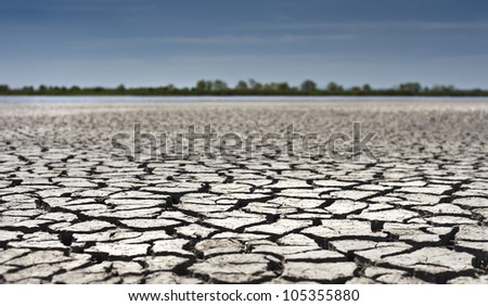 Surface of a wizened lake in dryness