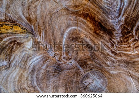 Surface of wood background.