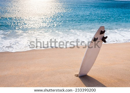 Surfboard on the wild beach with copy space for any text - stock photo