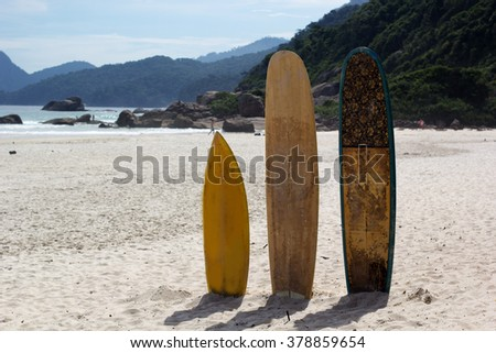 Surfboards standing upright in bright sun on the beach, Brazil