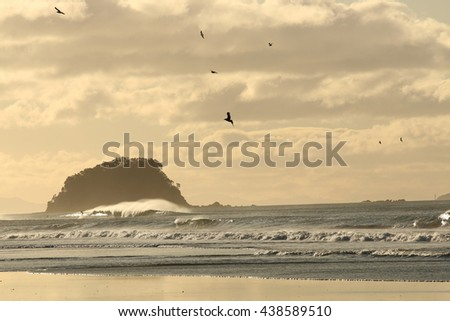 Surfing wave at Mount Maunganui beach, New Zealand