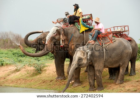 SURIN,THAILAND-MAY 23 : Elephant family happiness drinking water and relaxing after Ordination Parade on Elephants Back Festival at Moon river on May 23,2013 in Surin Province, Northeast of Thailand. - stock photo