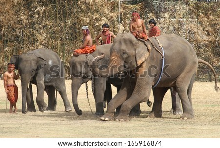 SURIN, THAILAND - NOVEMBER 16: Mahouts riding their elephants in the day show for the Elephant Roundup Festival held in Surin, Thailand on the 16th November, 2013.