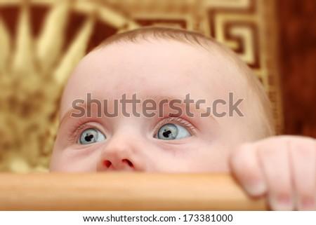 Surprised Little Baby Portrait in Bassinet Closeup - stock photo