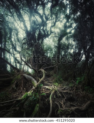 Surreal colors of fantasy landscape at mystical tropical mossy forest with amazing jungle plants. Concept for mysterious nature and fairy tale background - stock photo