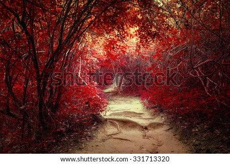 Surreal colors of fantasy landscape at tropical jungle forest with tunnel and path way through lush - stock photo