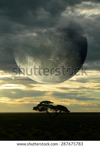 Surreal composition with sunset on the savanna and a giant moon piercing a cloudy sky, for science fiction or fantasy backgrounds. Elements of this image were furnished by NASA.