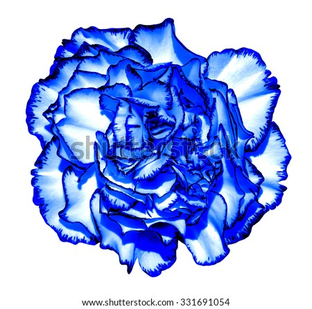 Surreal dark blue chrome clove flower macro isolated on white - stock photo