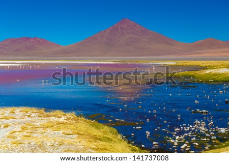 Surreal landscape with flamingos - stock photo